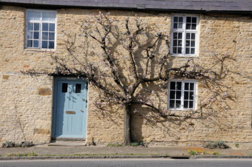 Stone Cottages,  Aynho