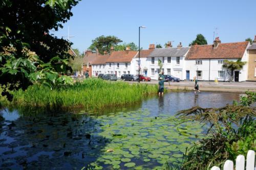 Pond, Bushey